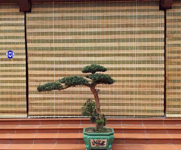 Mẫu rèm cửa sáo trúc sử dụng trong gia đình